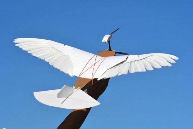 PigeonBot : یک هواپیمای بدون سرنشین که دقیقاً مانند یک پرنده واقعی پرواز می کند